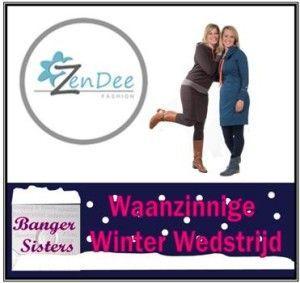 Waanzinnige Winter Wedstrijd - 1 Zendee