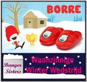 Waanzinnige Winter Wedstrijd - 13 Borre
