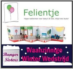 Waanzinnige Winter Wedstrijd - 15 Felientje