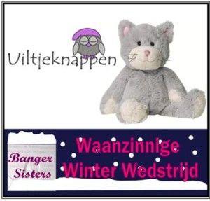 Waanzinnige Winter Wedstrijd - 21 Uiltje knappen
