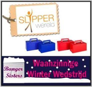 Waanzinnige Winter Wedstrijd - 30 Slipperwereld