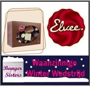 Waanzinnige Winter Wedstrijd - 5 Elvee