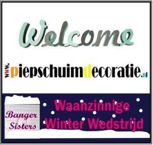Waanzinnige Winter Wedstrijd - 9 Piepschuimdecoratie