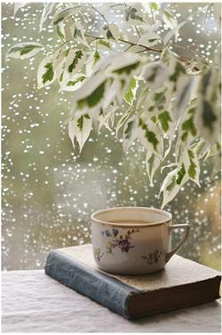 Slecht weer omhels de regen, vitaminen en thee
