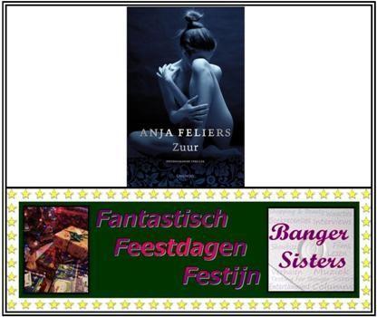 5. Fantastisch Feestdagen Festijn- Win Zuur van Anja Feliers!